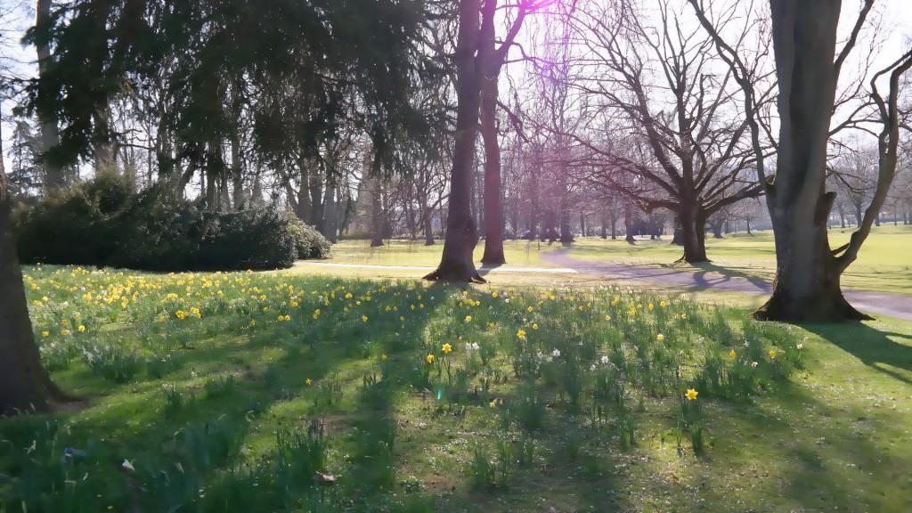 Graeflicher_Park_Annabelle_von_Oeynhausen_My_Stylery (21)