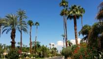 Palm Springs: Eine Deutsche in der Wüste Kaliforniens