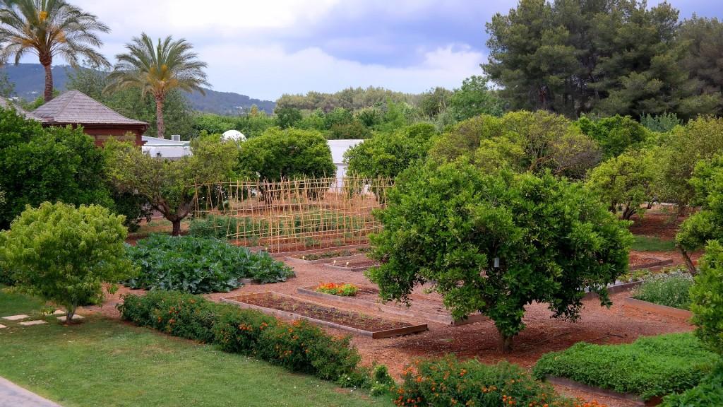 My_Stylery_Hotel_Atzaro_Agroturismo_Ibiza_Hotspot (4)