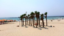 Ein perfekter Tag in Tel Aviv