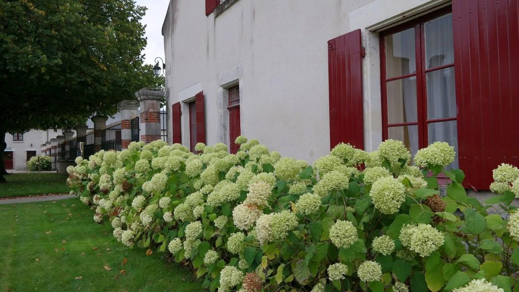 My_Stylery_Hotspot_Chateau_de_Cheverny_Loire_ (32)