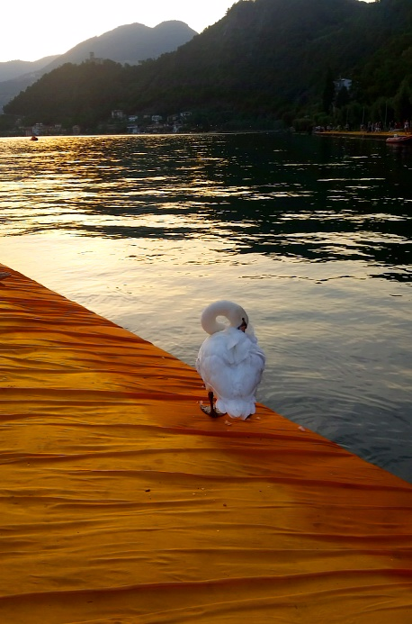 MyStylery Christo Floating Piers Lago D'Iseo (26)