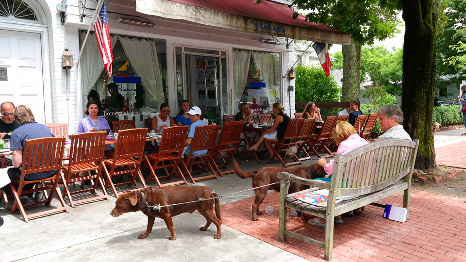 Bridgehampton MyStylery Hotspot Long Island The Hamptons (5)