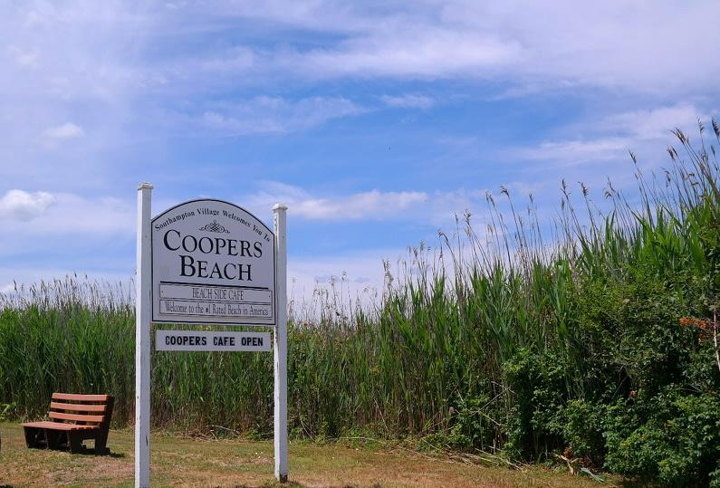 Southhampton (26) Meadow Lane MyStylery Hotspot Long Island The Hamptons
