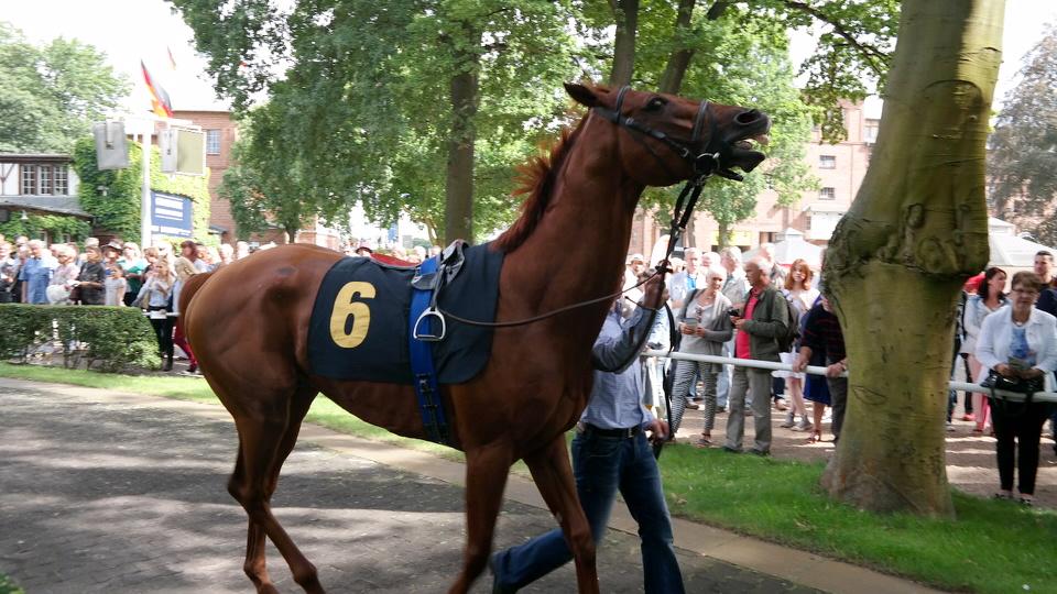 Großer Preis Berlin Pferderennen Hoppegarten MyStylery (29)