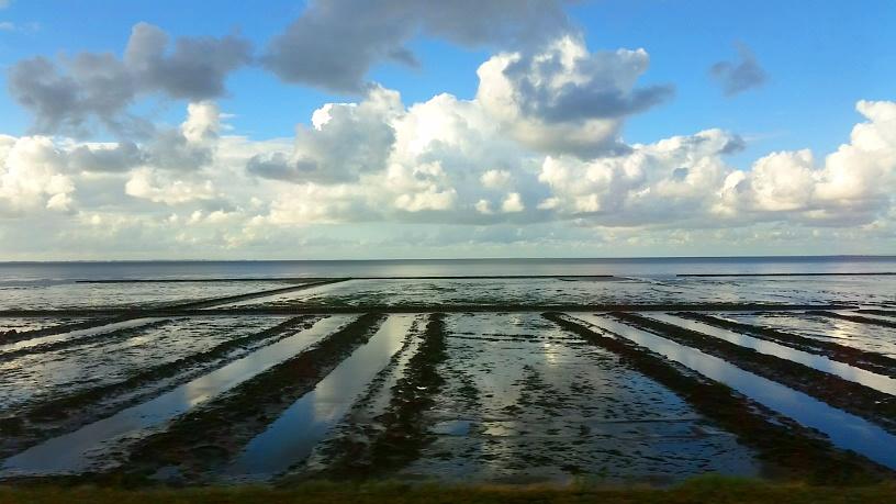 MyStylery Insel Sylt Ein perfekter Tag auf Sylt (14)