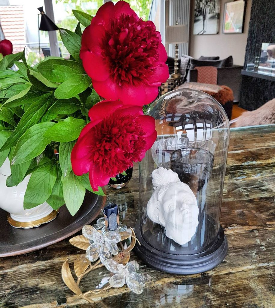 Still life with red peonies My Friday flower! Stillleben mithellip