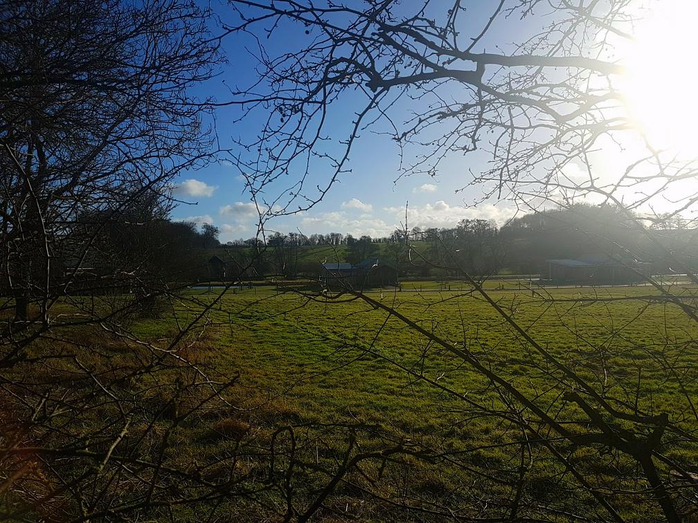 MS_Mystylery_Soho_Farmhouse_England_3_