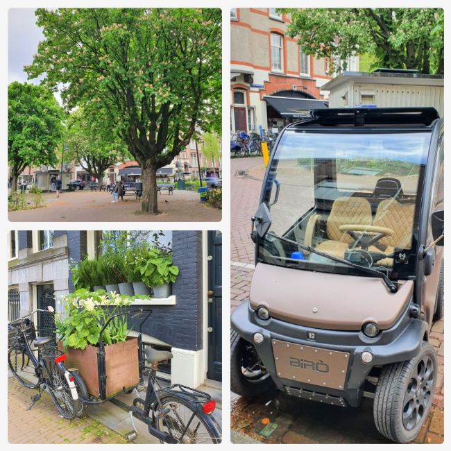 Viertel Oud Zuid in Amsterdam